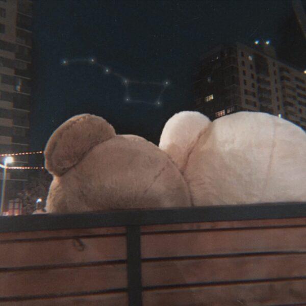 Огромные плюшевые медведи 230см и большая медведица